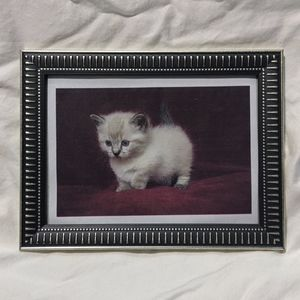 "Picture Frame 6"" x 8"""